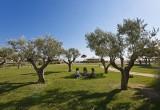 Les parcs paysagers, les aires de jeux pour enfants et les jardins botaniques