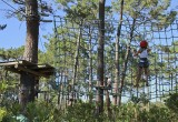 Treetop walkway, mountain biking, horse riding, amusement parks...