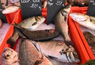 Fish, shellfish and by-products
