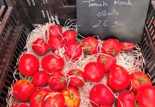 Fruits, légumes, plantes et dérivés