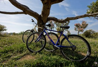Location de vélos, gyropodes, streetstepper...