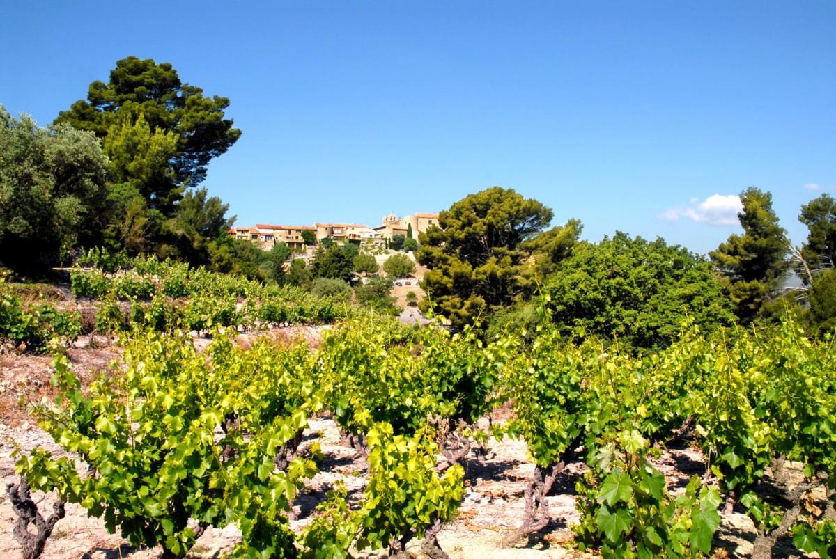 Vignobles de Bandol let Village du Castellet