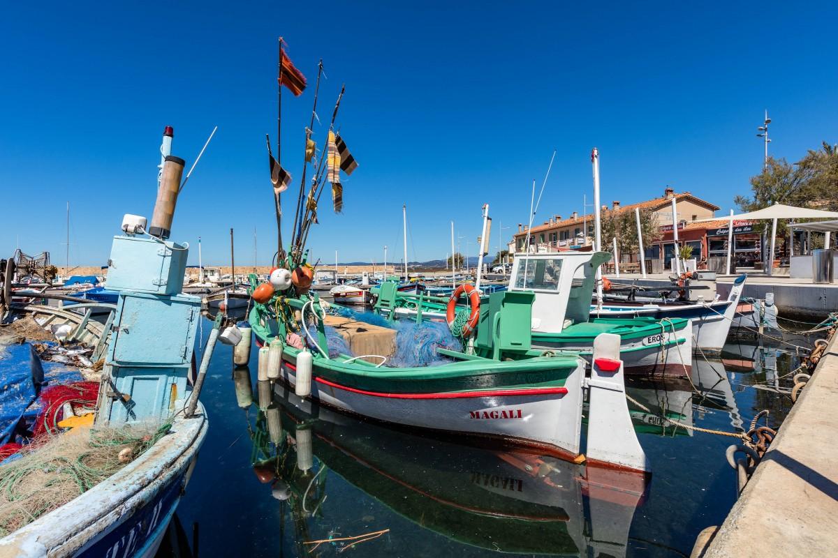 Bateaux de pêche au Brusc pointu barque de pèche pescatourisme patron pecheur