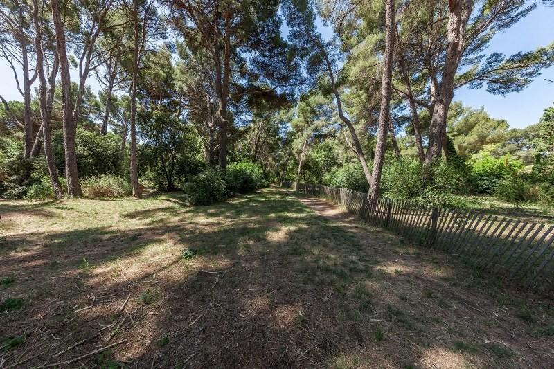Bois de la Coudoulière courir dans les bois à l'ombre footing running courir sur du plat