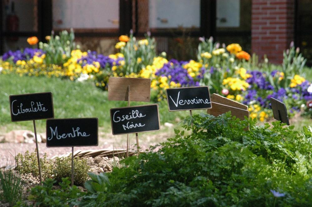Herbes aromatiques Maison du Cygne