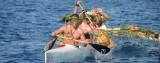 Festival du Pacifique 28-30 ao�t la Seyne sur Mer