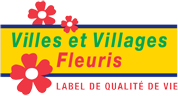 Six Fours, La Seyne, Ollioules : 3 fleurs