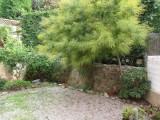 Maison mitoyenne - Les Lônes - Bourret Elena