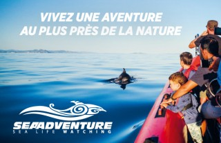encart-office-tourisme-57x37-2017-v2-vhd-45793